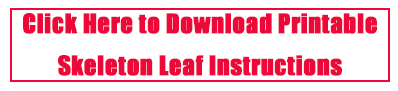 DIY Skeleton Leaf Instructions Printable - The Kreative Life