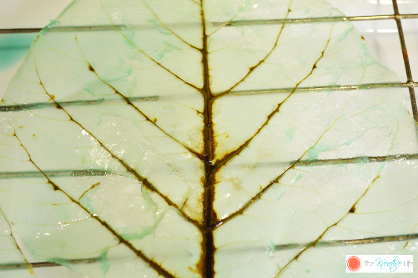 How To Make Skeleton Leaves - The Kreative Life