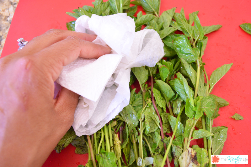 How to Make Mint-Infused Oil