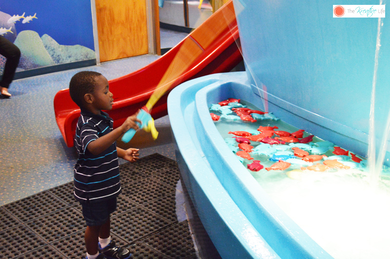 Things to Do in Miami Kid Friendly - The Kreative Life