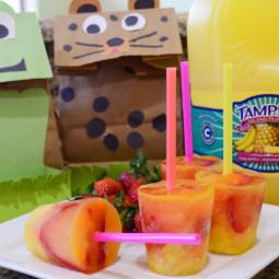 DIY Lunch Sack and Tampico Freeze Pop Fun - The Kreative Life